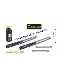 Tieferlegung um 30mm Triumph Tiger 800 2011-2014 Austauschfeder und Umlenkhebel