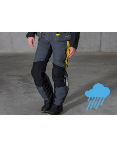Compañero Weather, Hose Damen